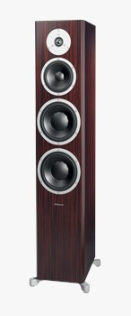 Excite X38 in Rosewood Dark Satin